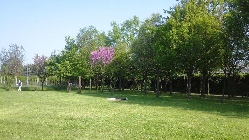 sonnellino parco